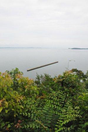 Teshima Art Museum: 美術館までの、敷地内の小道から見下ろす瀬戸内海