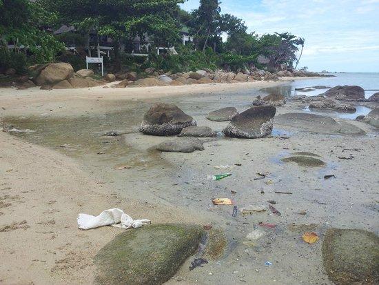 Lamai Bay View Resort : plage devant l'hôtel
