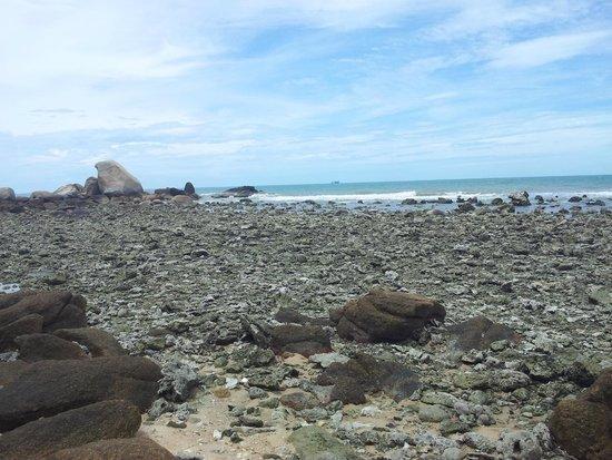 Lamai Bay View Resort: que des coraux morts à 5 min a pied de la plage de l'hôtel sur la gauche