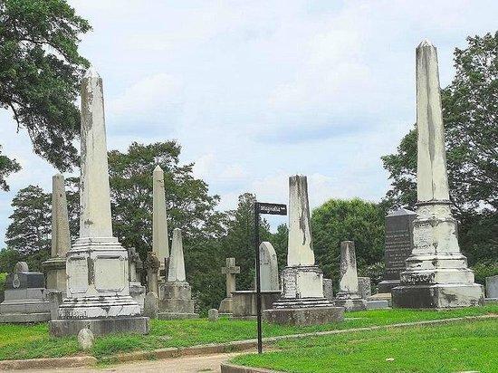 Historic Oakwood Cemetery : views