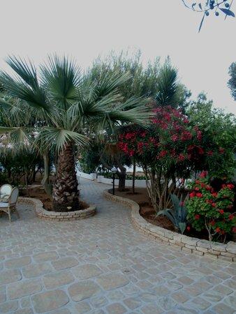 Agriturismo Resort Costa House : giardino