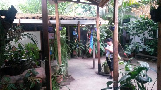 Matagalpa Spanish School: courtyard