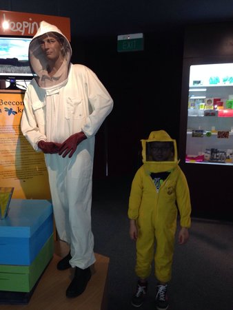 Arataki Honey Visitor Centre: Is there honey waiting to be collected from one of the hives?
