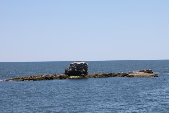 Rhode Island Bay Cruises: What's left of Whale Rock Lighthouse