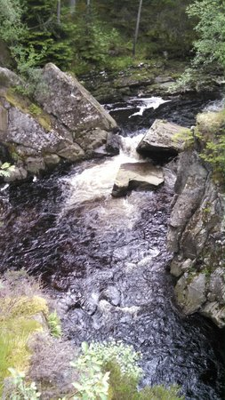 The Hairy Coo - Free Scottish Highlands Tour : Waterfall