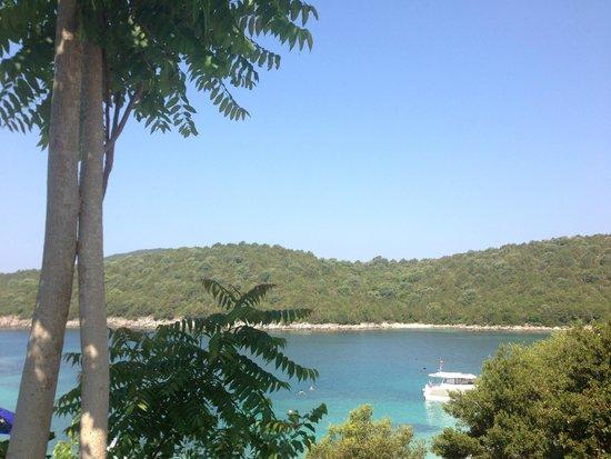 Domotel Agios Nikolaos: Two trees enjoying the view together... :-)
