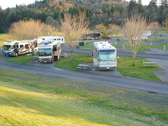 Brookhollow RV Park: Pull through sites