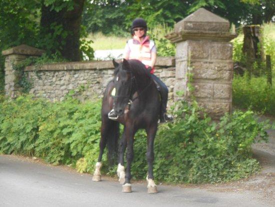 Bigland Hall Equine Group: Bigland Hall Equestrian.