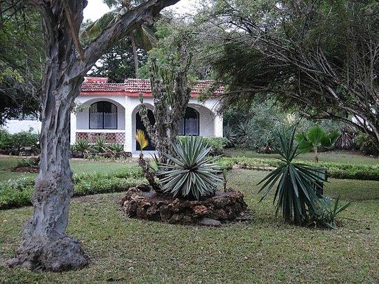 Diani Sea Lodge : garden