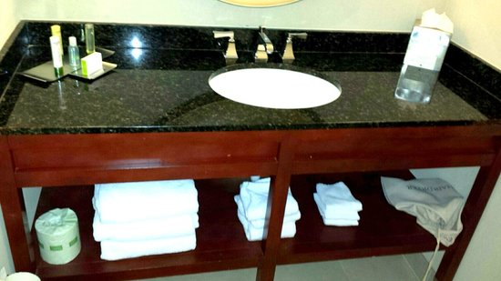 DoubleTree by Hilton Hotel Downtown Wilmington - Legal District: Bathroom area with large mirror above.  Very beautiful, modern, and functional!