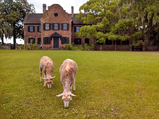 Inn at Middleton Place: The grounds crew, keeping things tidy.
