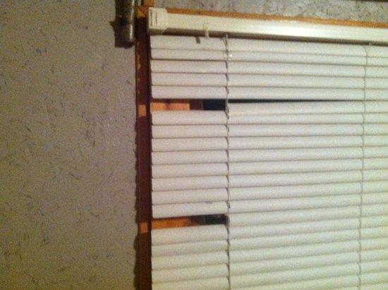 Cottonwood Cove: broken blinds
