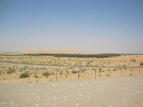 Hilton Al Ain: Desert