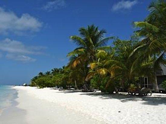 Kuredu Island Resort & Spa: La plage