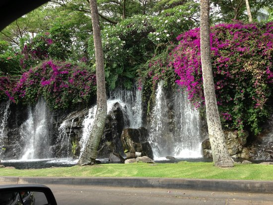 Grand Wailea - A Waldorf Astoria Resort : Drive in
