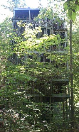 Cayuga Nature Center : The 6-story treehouse!