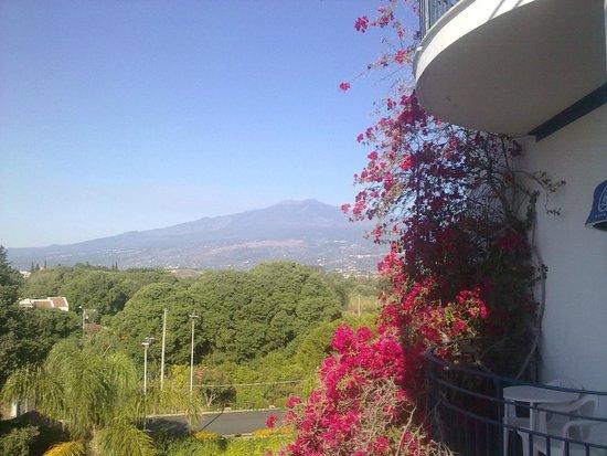 Sant Alphio Garden Hotel & Spa: вид из номера