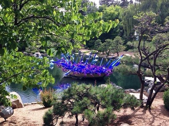 Chihuly Picture Of Denver Botanic Gardens Denver Tripadvisor