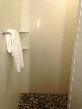 Best Western Premier Ivy Inn & Suites: The amazing shower!!