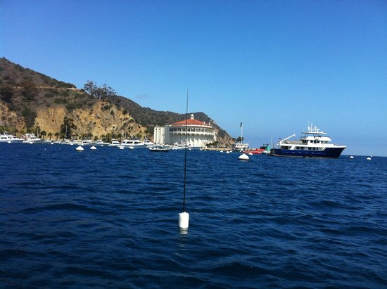 Catalina Island Company: great views of the coast from the tour boat