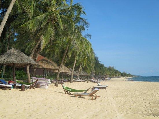 Saigon Phu Quoc Resort: Strand