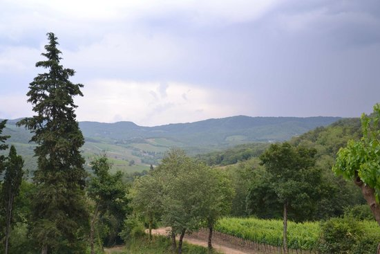 le Bonatte: Rear terrace view to the Tuscan valley
