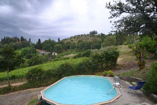 le Bonatte: Pool in foreground and vineyard in background