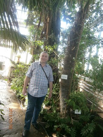 Kaunas Botanical Garden: В оранжерее