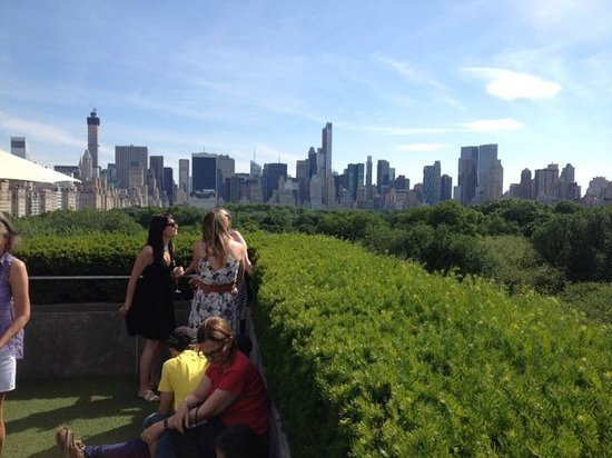 The Metropolitan Museum of Art: View from Roof Top Cafe
