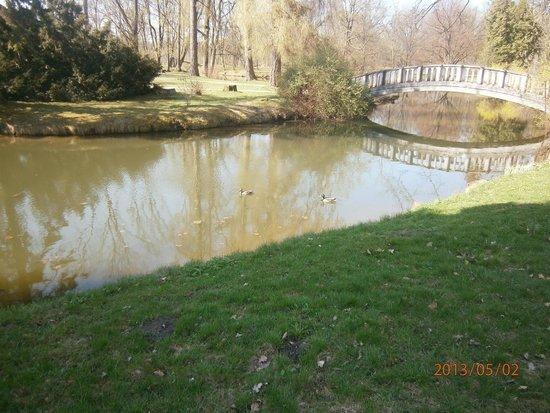 Kaunas Botanical Garden: Один из водоёмов сада