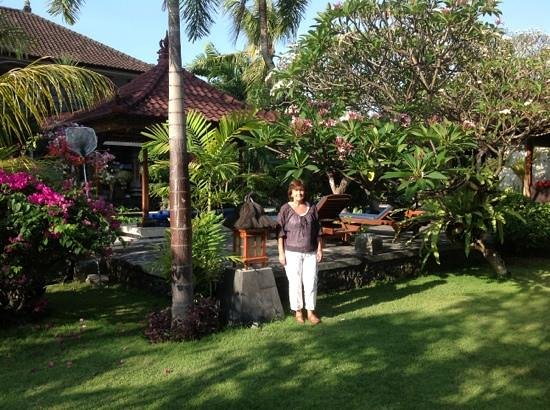Taman Agung Hotel: lovely grounds