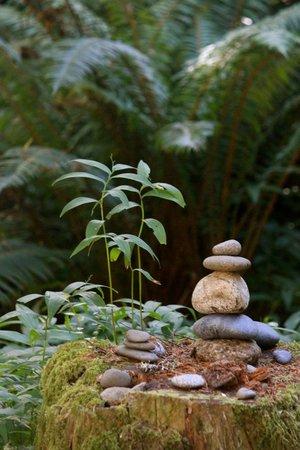 WildSpring Guest Habitat: Everything invites peace.