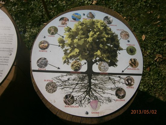Kaunas Botanical Garden: Круговорот природы