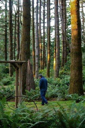 WildSpring Guest Habitat: Walking the mossy labyrinth.
