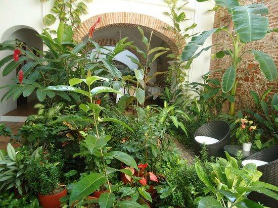 Alfiz Hotel : Jardim interno do Hotel