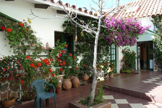 Casa Verde B&B : rust en zaligheid in de patio