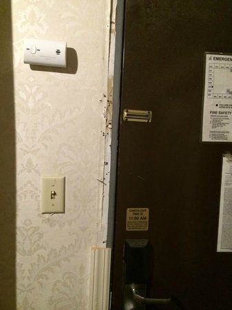 Motel 6 Elizabeth - Newark Liberty Intl Airport: Police Raid?