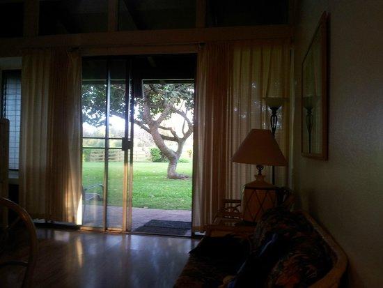 Turtle Bay Condos: vista da sala para o jardim
