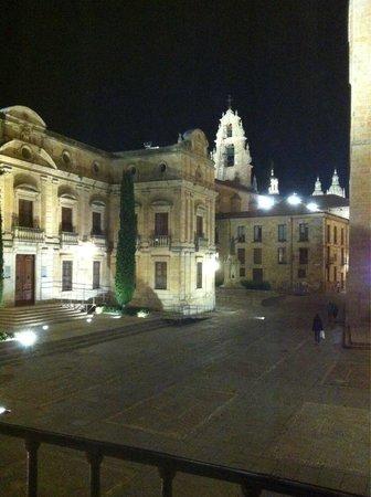 NH Salamanca Puerta de la Catedral : Uitzicht vanuit onze kamer