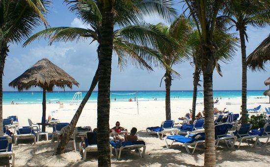 Sandos Playacar Beach Resort : Playa.