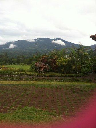 Los Establos Boutique Inn: View from Resort- Vplcano