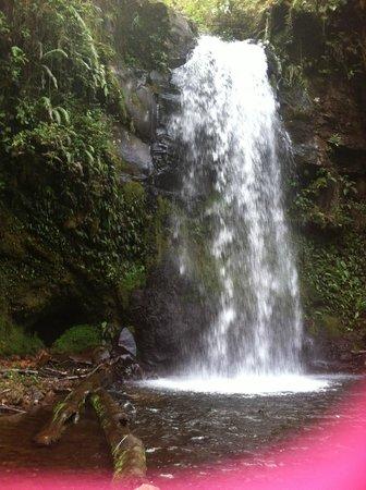 Los Establos Boutique Hotel : Hidden Waterfall 2