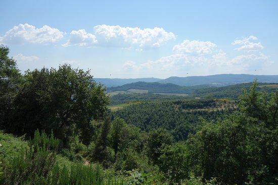 Tenuta Vitalonga: View