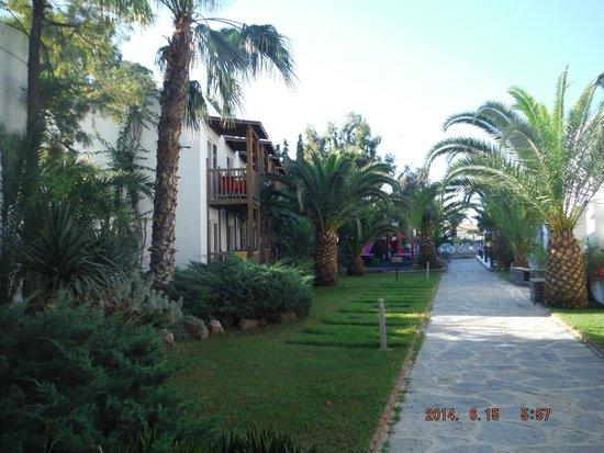 Magnific Hotel : gardens