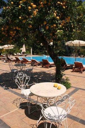 Castello di San Marco Charming Hotel & SPA : by th epool