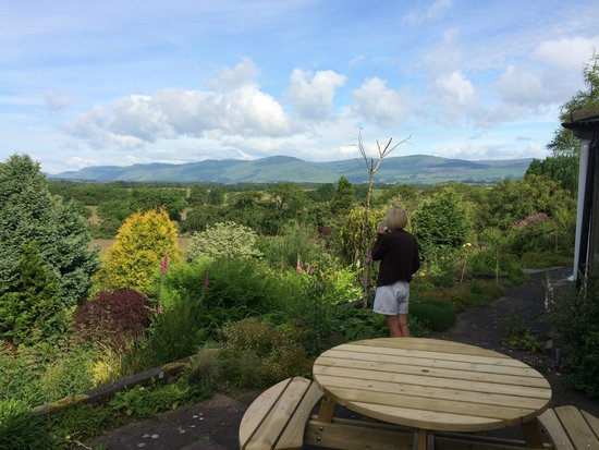 Saline, UK: On the patio - looking over towards the Ochils.