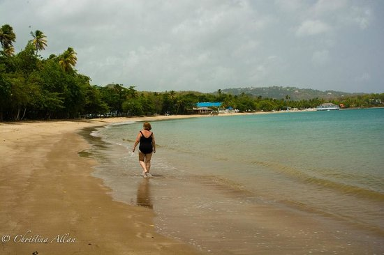 Villa Beach Cottages : Walking on Choc Beach