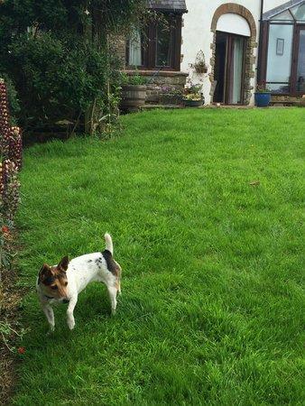 Quarryside: Peggy