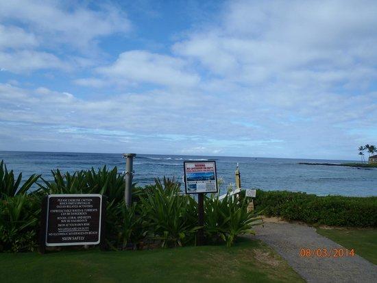 Kiahuna Plantation Resort: Praia do hotel