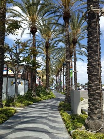 Anaheim Marriott Suites: Sidewalks to the convention center